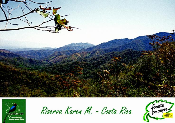 http://www.forestepersempre.org/web/Costarica/Images/Riserva_Karen.jpg